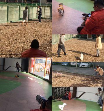 飛行犬撮影会♪