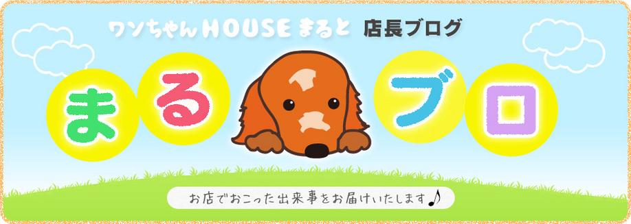 まるブロ-愛知県最大級 大型ペットサロンワンちゃんハウスまると
