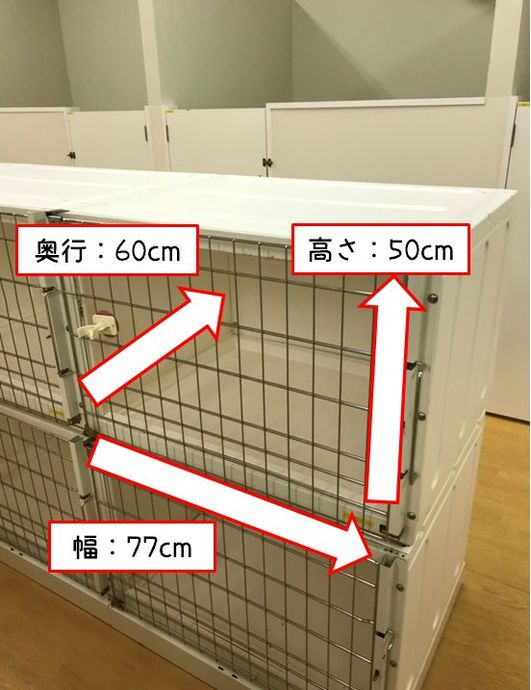【 シングルルーム 】 小型犬向けのスタンダードなお部屋です。
