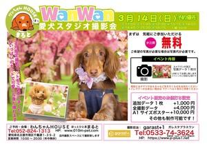 季節先取りのテーマ「桜」を背景に撮影いたします。